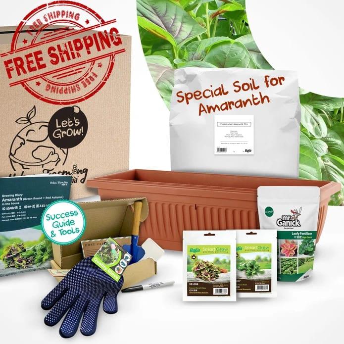 Urban Farming Package - Green Round Amaranth + Amaranth Red Autumn | Vegetable Garden | Home Garden | Baba Gardening