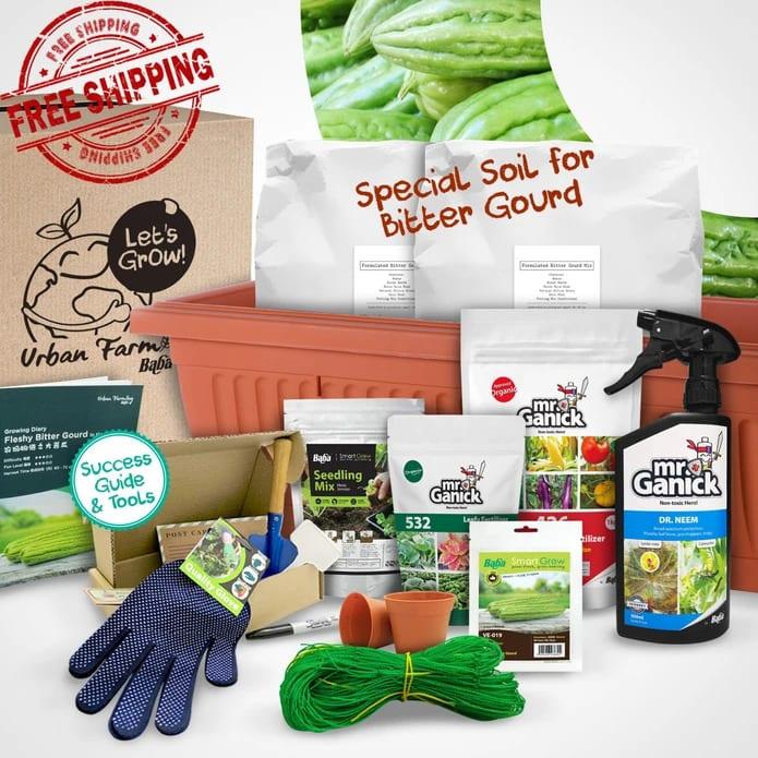 Urban Farming Package - Fleshy Bitter Gourd| Vegetable Garden | Home Garden | Baba Gardening