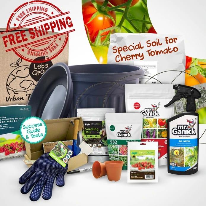 Urban Farming Package - Cherry Tomato | Vegetable Garden | Home Garden | Baba Gardening