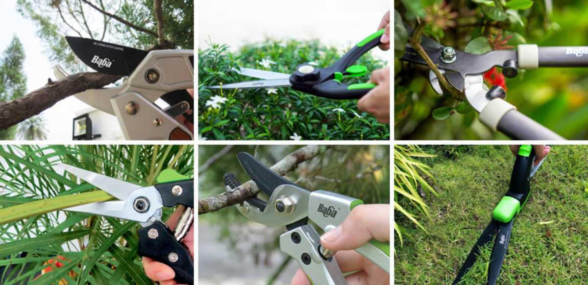 Garden Tools | Tools used for Gardening | Pruning Shears | Baba Gardening