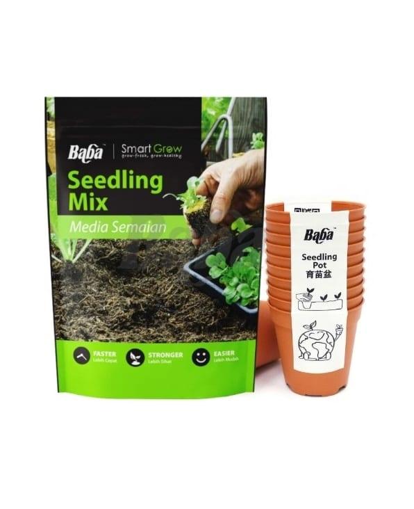 Baba Seedling Soit + Pot